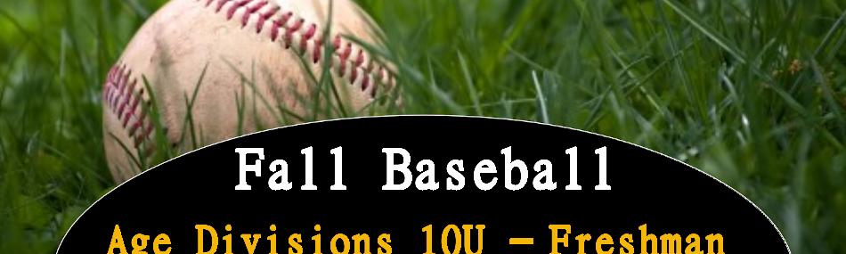 Fall Baseball Banner